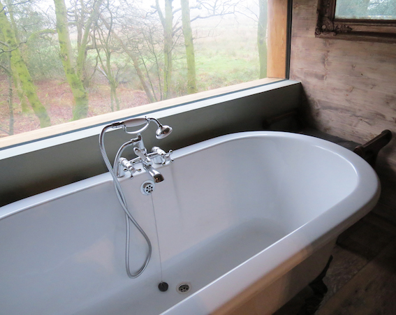 Treehouse bath with ribbon window