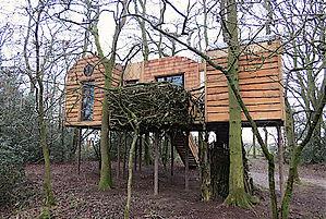 Treehouse Approach3 web 72.jpg