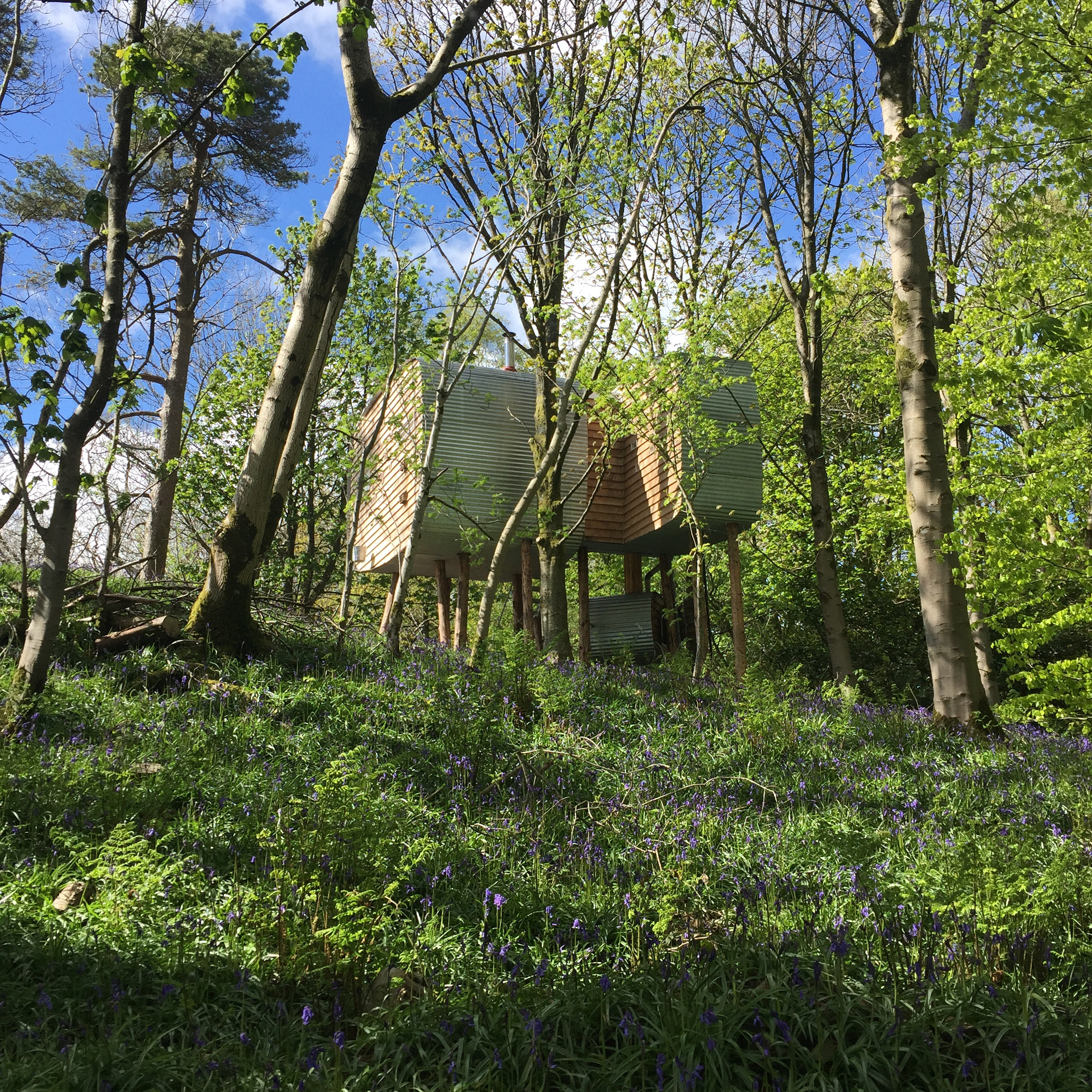 Brockloch Treehouse