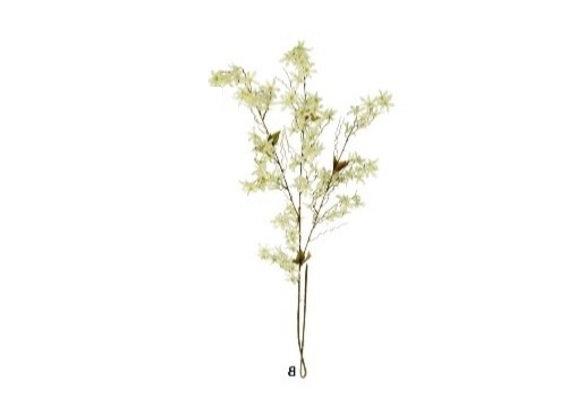Rama Silvestre Blanca