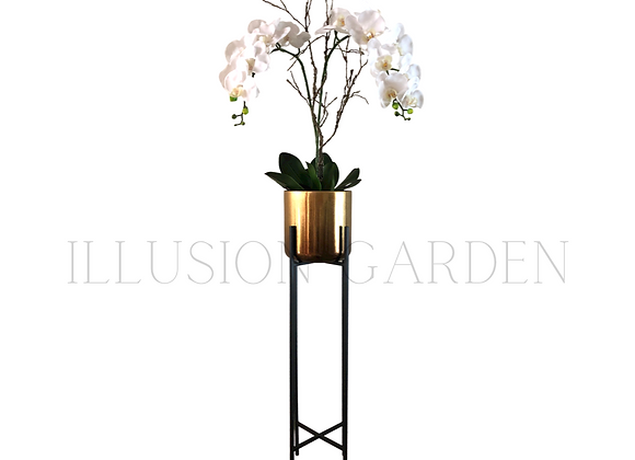 Orquidea Phaloenopsis Maceta Cerámica dorada D 19 cm c/pedestal negro H 89 cm