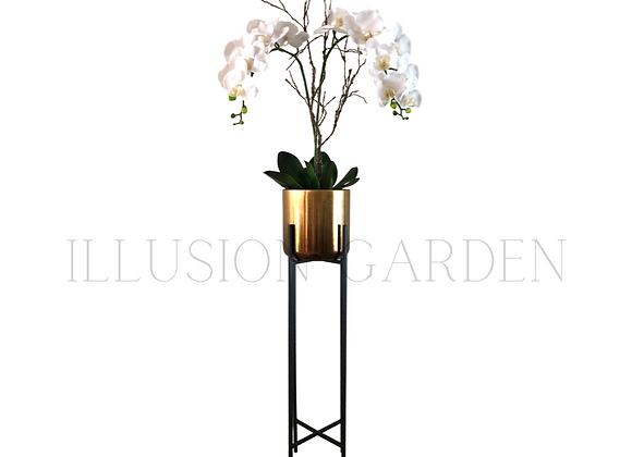 Orquídea Phaloenopsis Maceta Cerámica dorada D 19 cm c/pedestal negro H 89 cm