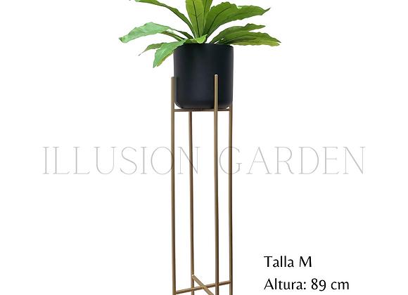 Dracaena con Maceta Cerámica Negra D 19 cm c/pedestal dorado H 89 cm