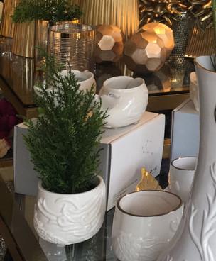 15% Descuentos en Productos de Navidad Illusion Garden