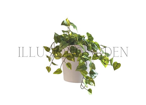 Planta artificial boa pequeña en maceta blanca. Planta artificial
