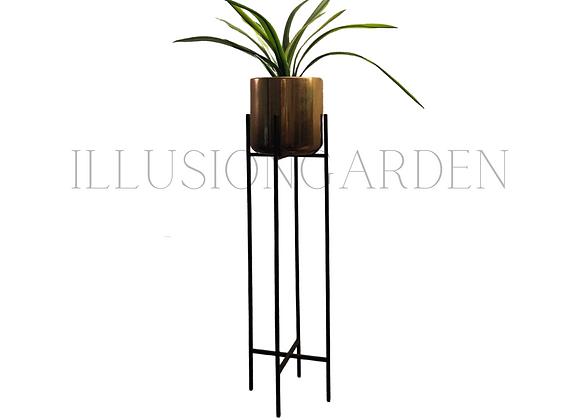 Planta Cymbidium con Maceta Cerámica Dorada D 19 cm c/pedestal negro H 82 cm
