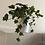 Thumbnail: Planta artificial yedra pequeña en maceta blanca. Planta artificial