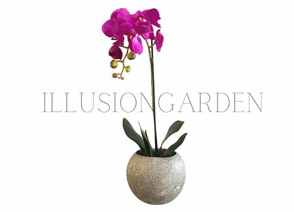 Orquídea purpura en maceta redonda. Planta artificial
