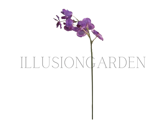Orquídea Tallo Vanda Lila