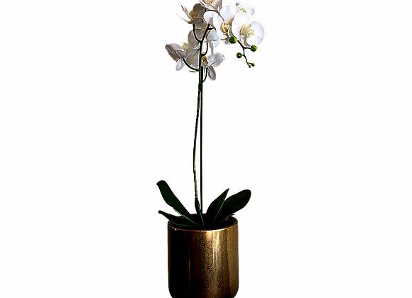 Orquídea artificial blanca large en maceta dorada 19X19