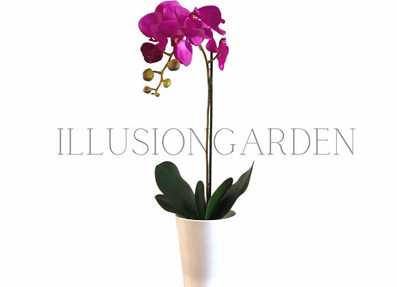 Orquídea purpura en maceta blanca. Planta artificial.