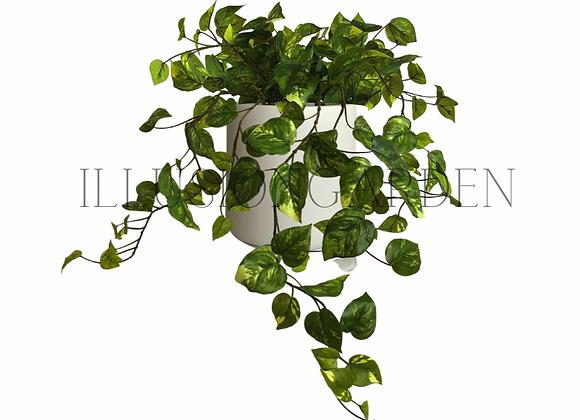 Planta Boa artificial en maceta blanca mate