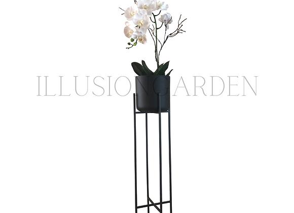 Orquidea Phaloenopsis Maceta Cerámica Negra D 19 cm c/pedestal negro H 89 cm
