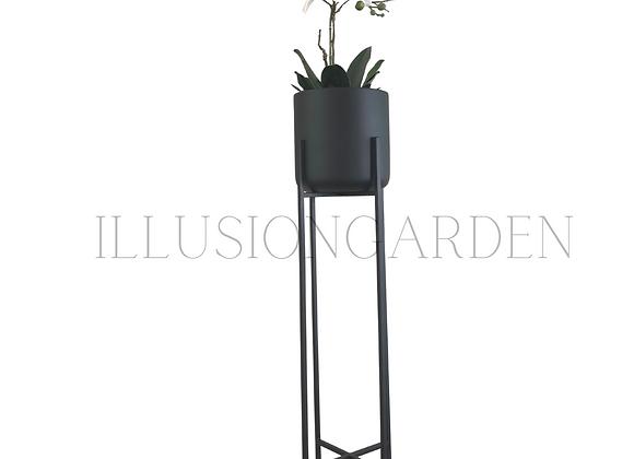 Orquidea Phaloenopsis blanco/fucsia con maceta cerámica c/pedestal negro H82 cm