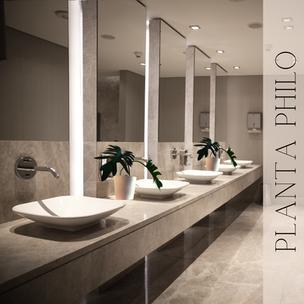 Plantas artificiales para baños