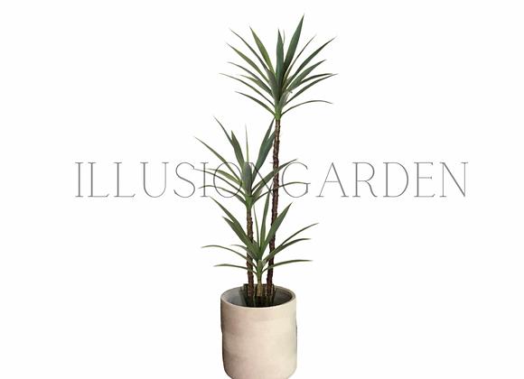 Yucca 1.75mt con maceta
