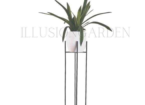 Planta Cymbidium con Maceta Cerámica blanca D 19 cm c/pedestal negro H89 cm