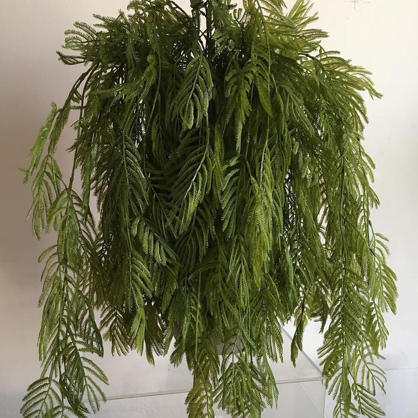 Colgante Mimosa