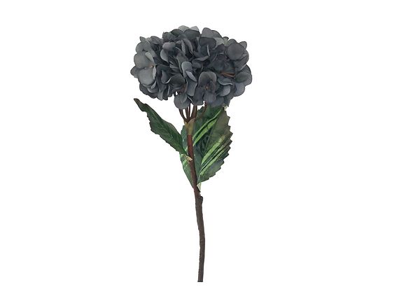 Hortensias azul tornasol