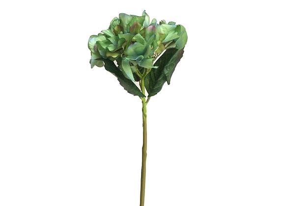 Hortensia Verde Tornasol