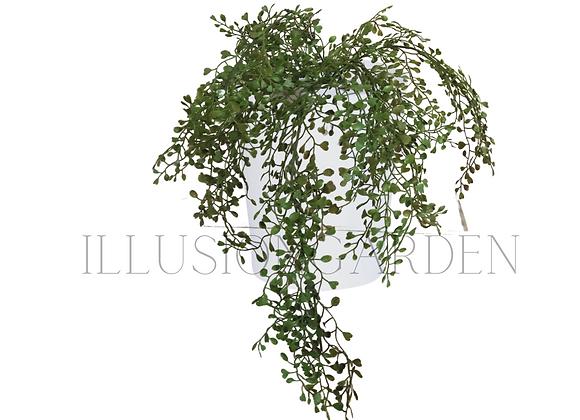 Planta artificial Colgante Boxwood Seed con maceta blanca