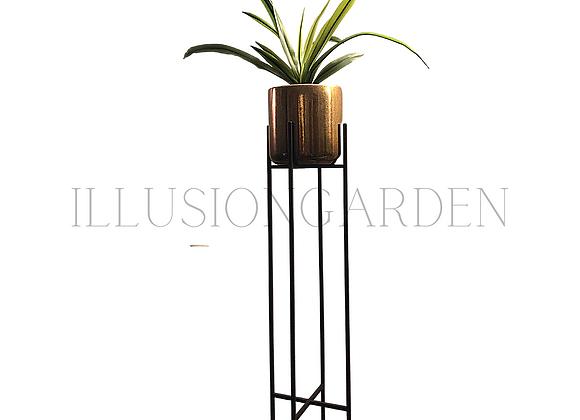 Planta Cymbidium con Maceta Cerámica Dorada D 19 cm c/pedestal  82 cm negro
