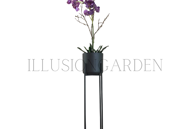 Orquidea Vanda morada Maceta Cerámica Negra D 19 cm c/pedestal negro H 89 cm