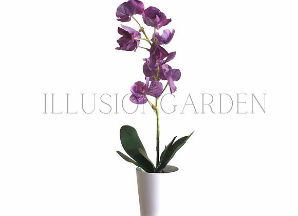 Orquídea Vanda morad en maceta blanca. Planta artificial