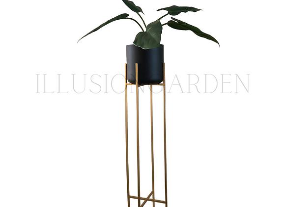 Planta Kala con maceta negra 19x19 y pedestal dorado H 82 cm
