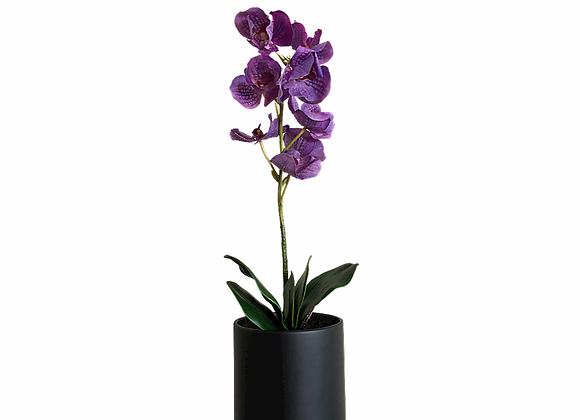 Orquídea artificial Morada en maceta 19X19 negra