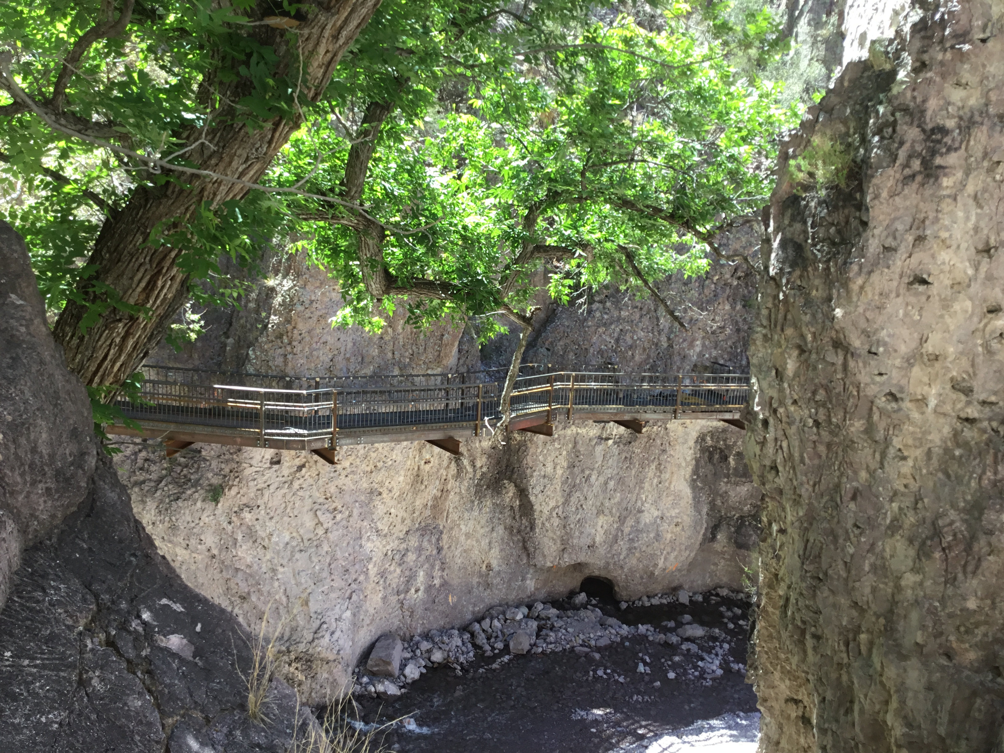 Gila Canyon Catwalk