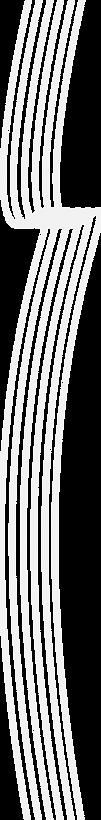 PEG2020-Swash Ribbon 3.png
