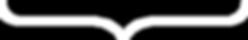 BFI Website Bracket-White.png