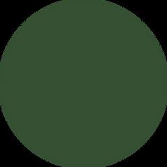 website-timeline-green holder.png