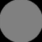 website-timeline-dk gray holder.png