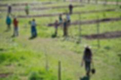 eieio-farm-shovels.jpg