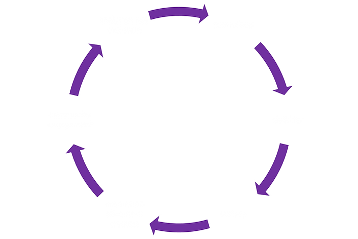 life cycle.png