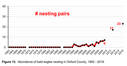 Graph of Nesting Eagles.png