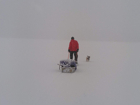 Steven King Movie or Winter Wonderland?