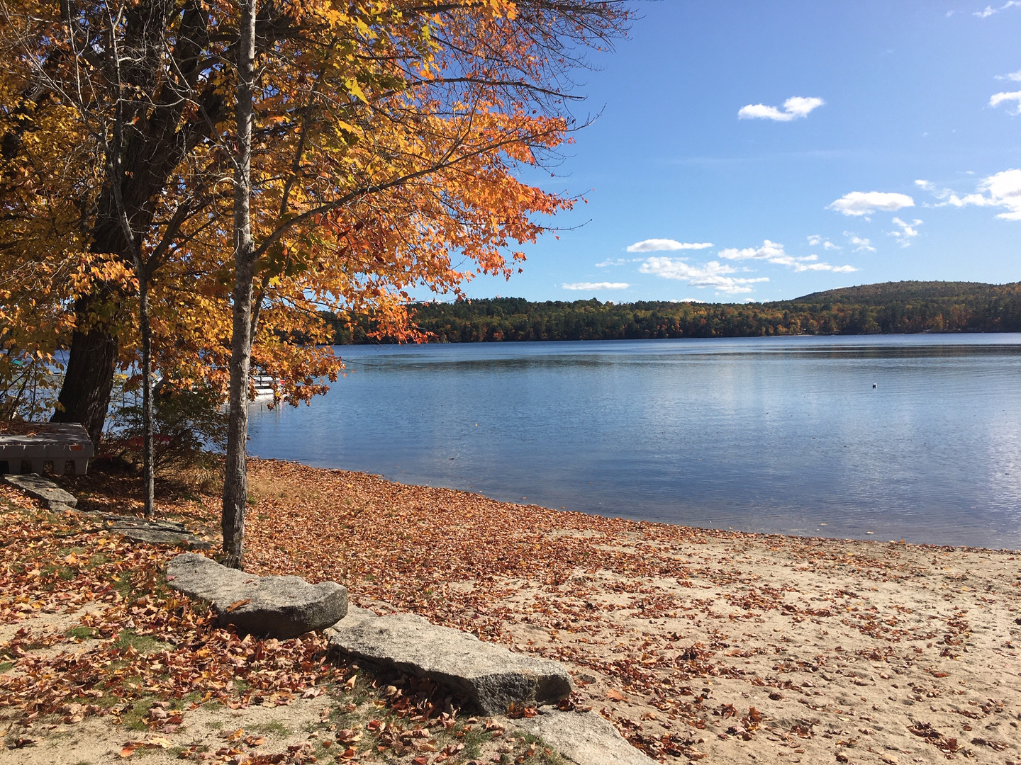 Town Beach in the Fall 2019 Brenda Hambl