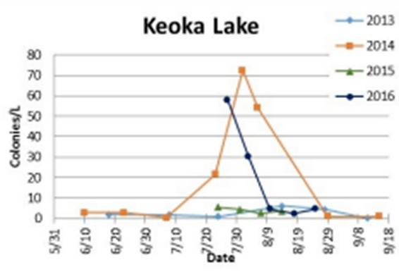 Keoka Lake Gleo Concentrations.png