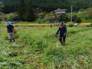 「市有地管理事業」を9月23日の秋分の日に行いました。