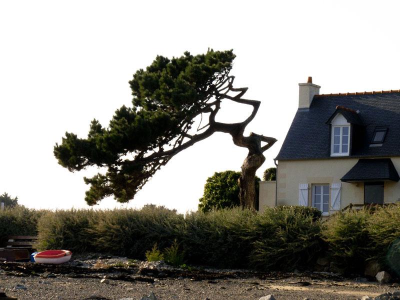 franc 00057 Bretagne