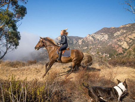 Book Launch: One Gun Ranch, Malibu
