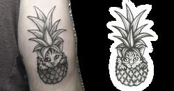 pineappleCat