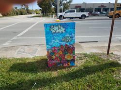 Utility Box Pompano Beach FL
