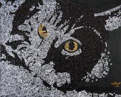 Shine Cat