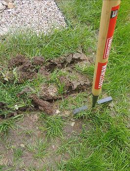 garden install_edited.jpg