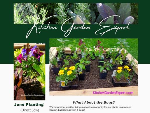 Gardening Tips Newsletter - June