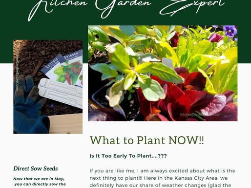 Garden Tips Newsletter - May